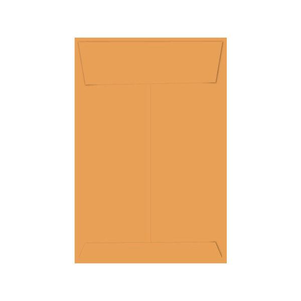 Stink Sack Small Priority Meds Bag | סטינק סק S דואר