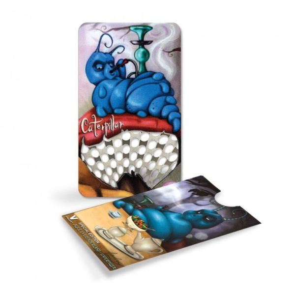 VS Special Edition - Caterpiller | וי סינדיקט ספיישל - חתול צ'שייר - זחל