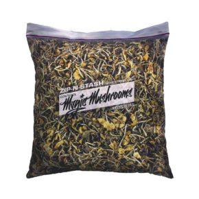 Cyanescens Magic Mushrooms Pillowcase | ציפית לכרית - פטריות הזיה